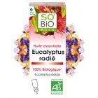 Eteerinen Eucalyptus Radiata–öljy, 100% luonnonmukainen (15ml)